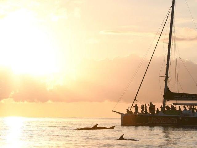 Ausflüge und Sehenswürdigkeiten 'Katamaran und Bootstouren auf Mallorca'