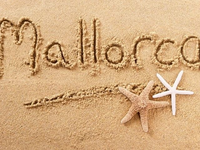 Excursions,tours and things to do in 'Activities and offers for residents in Mallorca'